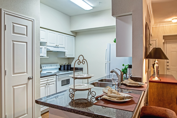 kitchen at Plaza at Westchase Apartments