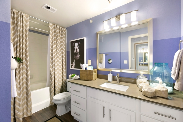 bathroom at The Preserve at Travis Creek Apartments
