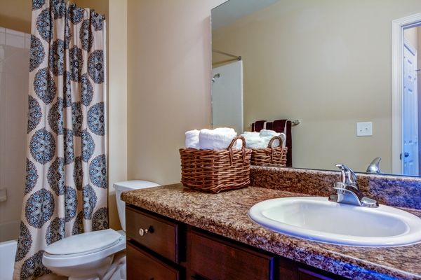 bathroom at Lauren Ridge Apartments