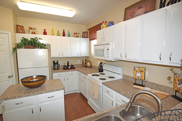 kitchen at The Villages of Cypress Creek Apartments