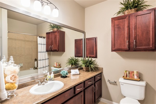 bathroom at Deseo at Grand Mission Apartments