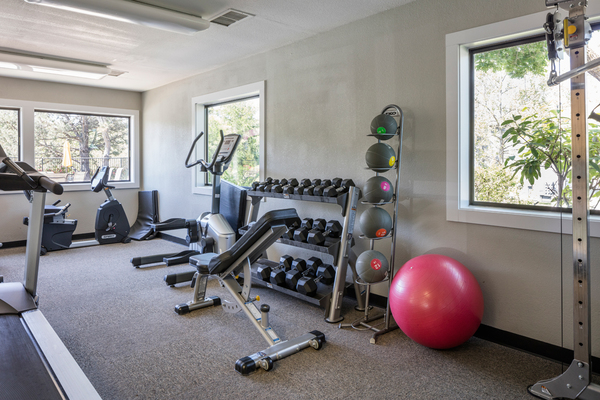 fitness center at TimberLane Village Apartments
