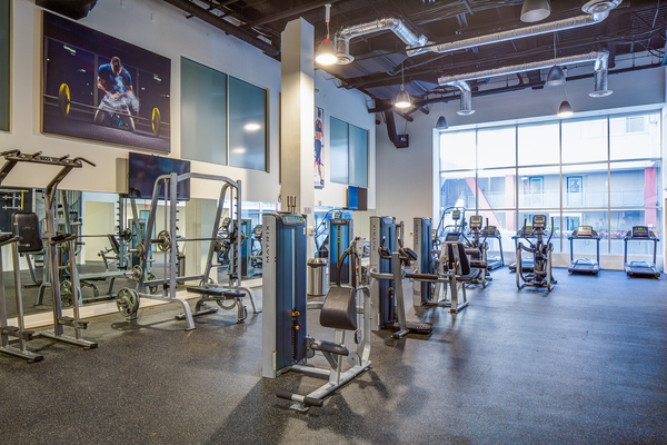 fitness center at Avana on Pine Apartments
