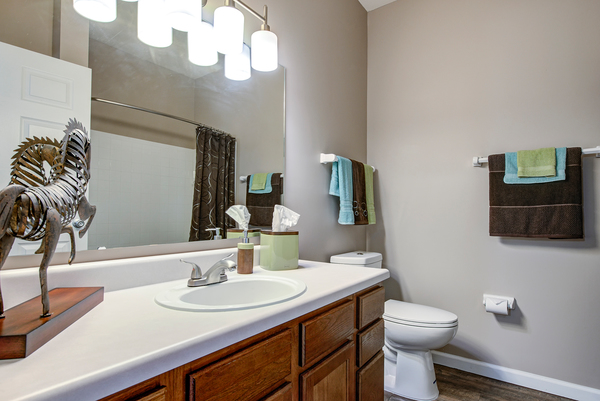 bathroom at Summit Pointe Apartments
