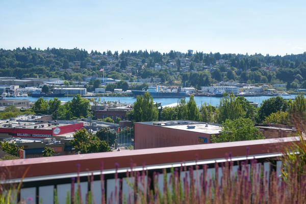 rooftop view at Ballard On 20th Apartments