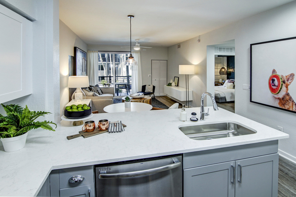 kitchen at Solmar on Sixth Luxury Apartments