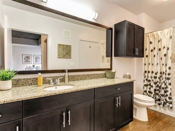 bathroom at Gallery at Turtle Creek Apartments