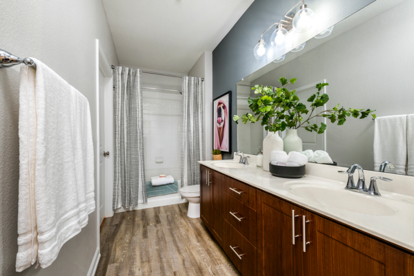 bathroom at Ashton at Dulles Corner Apartments
