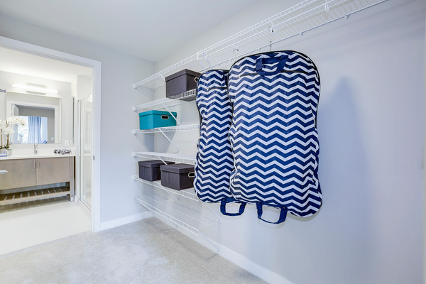 closet at Valo Apartments