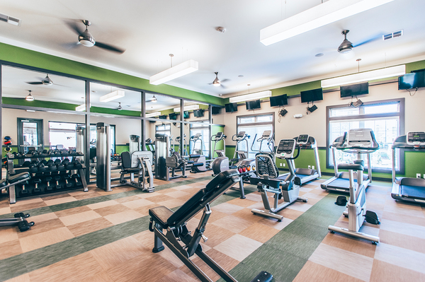 fitness center at Vintage Blackman Apartments