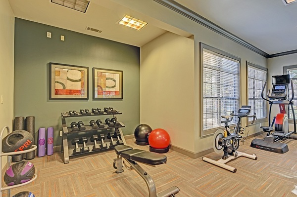 Fitness Center at Brisa at Shadowlake