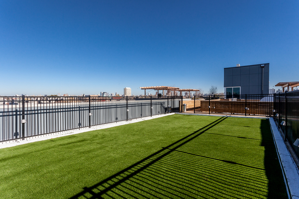 dog park at Luxe on Chicago Apartments