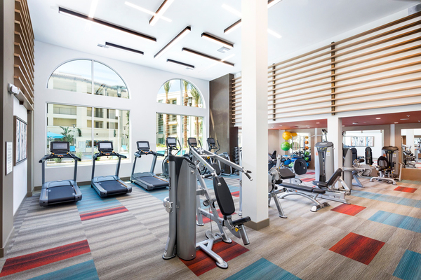 fitness center at Avila Apartments