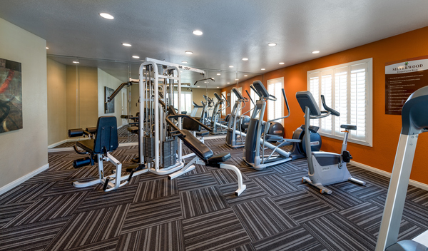 fitness center at The Boulevard Apartments