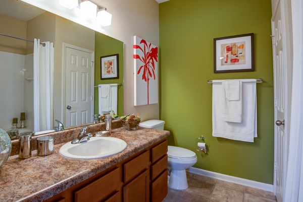 bathroom at River Run Apartments