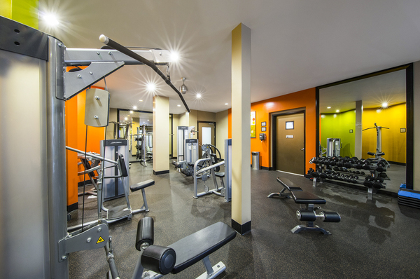 fitness center at The Gallery at NoHo Commons Apartments