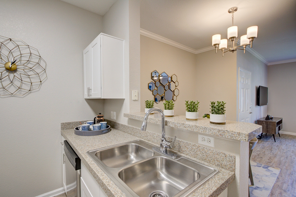 kitchen at Alvista Harmony