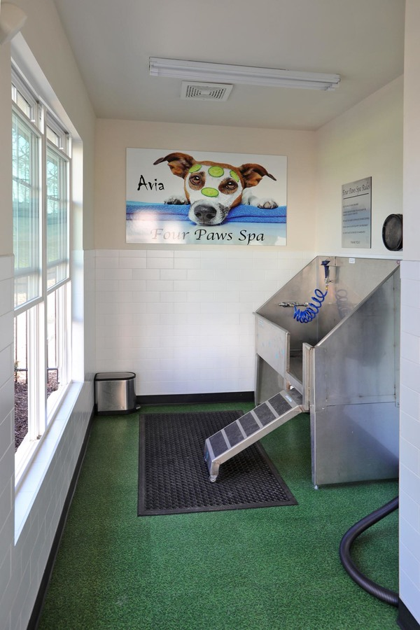 dog wash station at Avia Apartments