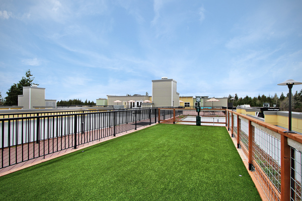 dog park at Destinations Lynnwood Apartments