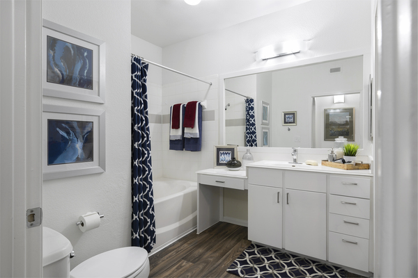 bathroom at Ravina Apartment Homes