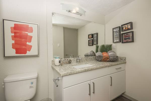 bathroom at South Lamar Village Apartments