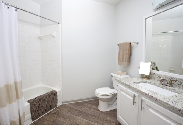 bathroom at Perimeter 5550 Apartments